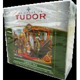 Tudor Green w saszetkach 100x1,5g