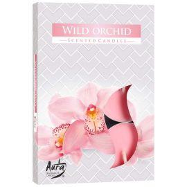Podgrzewacz zapachowy - dzika orchidea 6szt