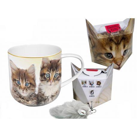 Kubek - koty bliźniaki + pudełko z ogonkiem