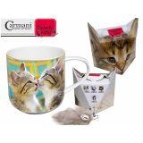 Kubek - kociaki całujące się + pudełko z ogonkiem