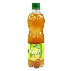 Kombucha - herbata zielona - 500 ml - Bio Linie