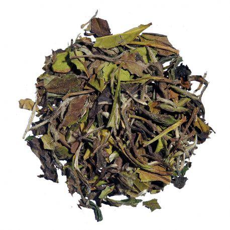 White Tea Pai Mu Tan - 25g