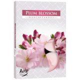 Podgrzewacz zapachowy - kwiat śliwy 6szt