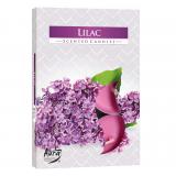 Podgrzewacz zapachowy - Kwiaty Bzu 6szt
