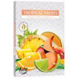 Podgrzewacz zapachowy - Owoce tropikalne 6szt.