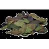 Guayusa całe liście - 100g
